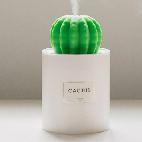 Cactus Stress Relief Aromatherapy Humidifier - Onyx Better